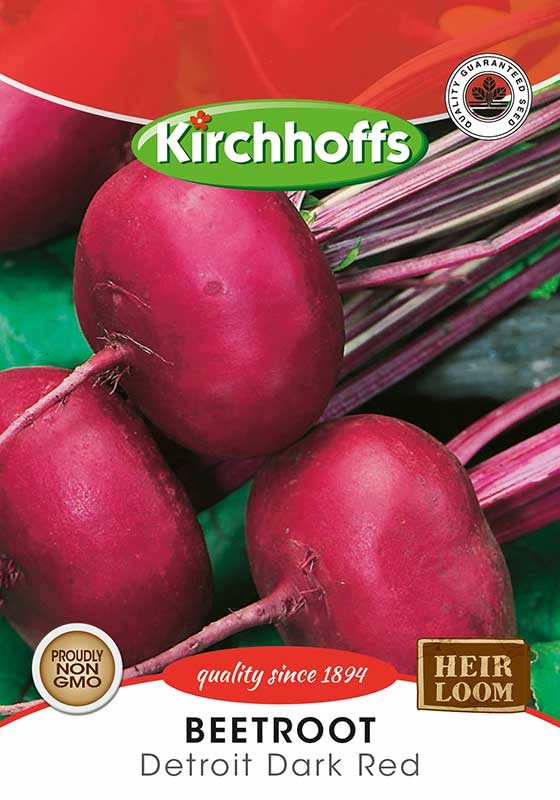 Kirchhoffs Beta Vulgaris