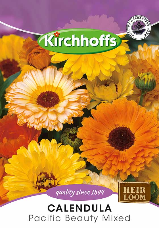 Kirchhoffs Calendula Officianalis