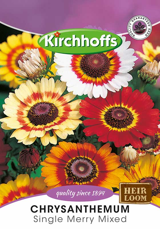 Kirchhoffs Chrysanthemum Carinatum