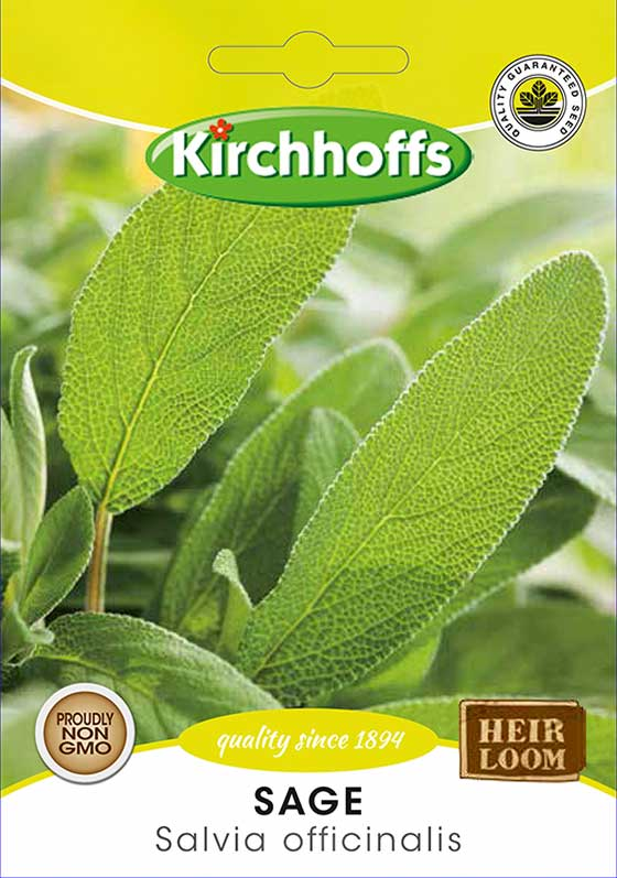 Kirchhoffs Salvia  Officianalis